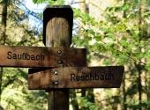 buchbergerleithe-37