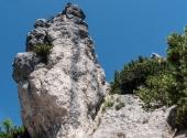 p1110236-steinerne-agnes